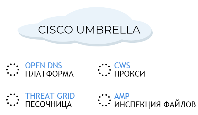 cisco umbrella свойства